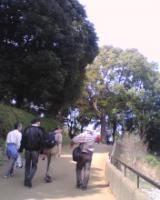 20080329-01